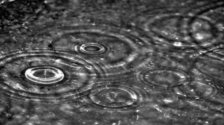 Rainwater_Harvesting
